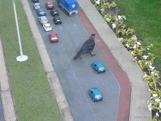 Big Bird in Traffic