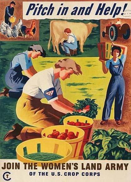 ld-farm-work.jpg