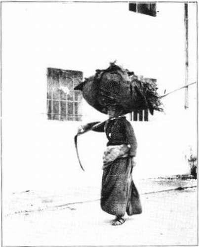 Tyrolean Woman