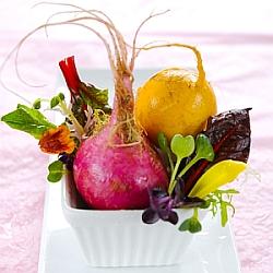 turnips250