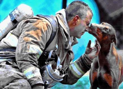 this, however, does. COME ON IT'S A DOGGY KISSING A FIREMAN