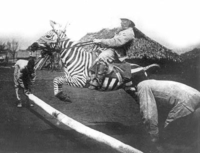 man-riding-zebra