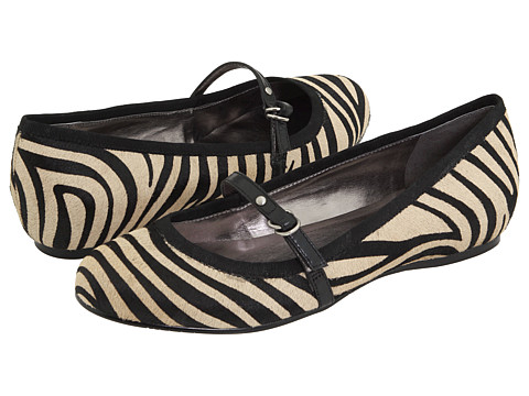 zebra dknyc
