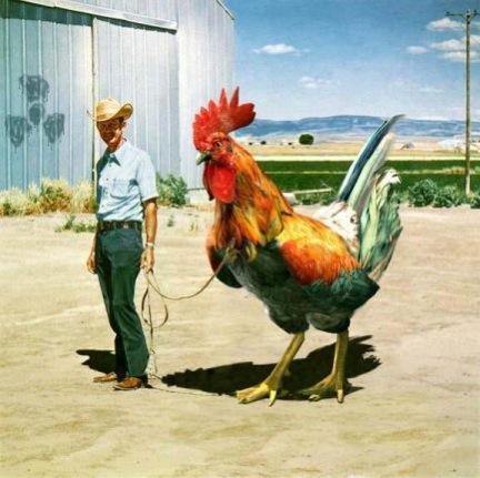 huge-cock