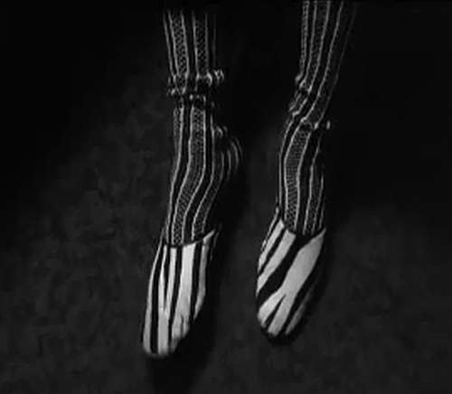 Andre Leon Talley's zebra shoes from Unzipped